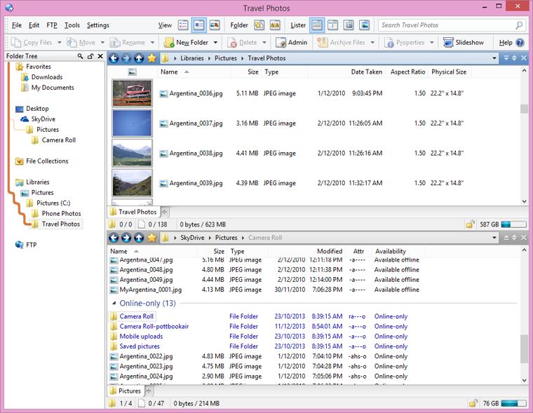 Directory Opus windows