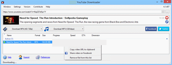 Youtube Downloader Pro windows